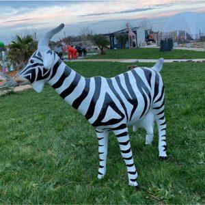 Chevre zebre résine