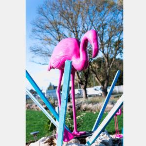 Flammant rose 125 cm
