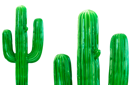 cactus-contact-art-innov