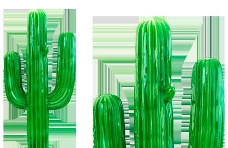 cactus-contact-art-innov